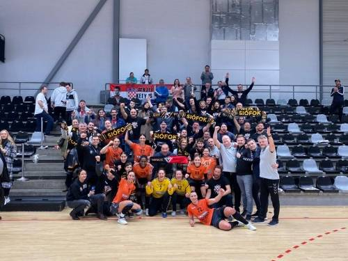 EHF Cup: Two points from Denmark
